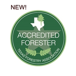View the Texas Accredited Foresters